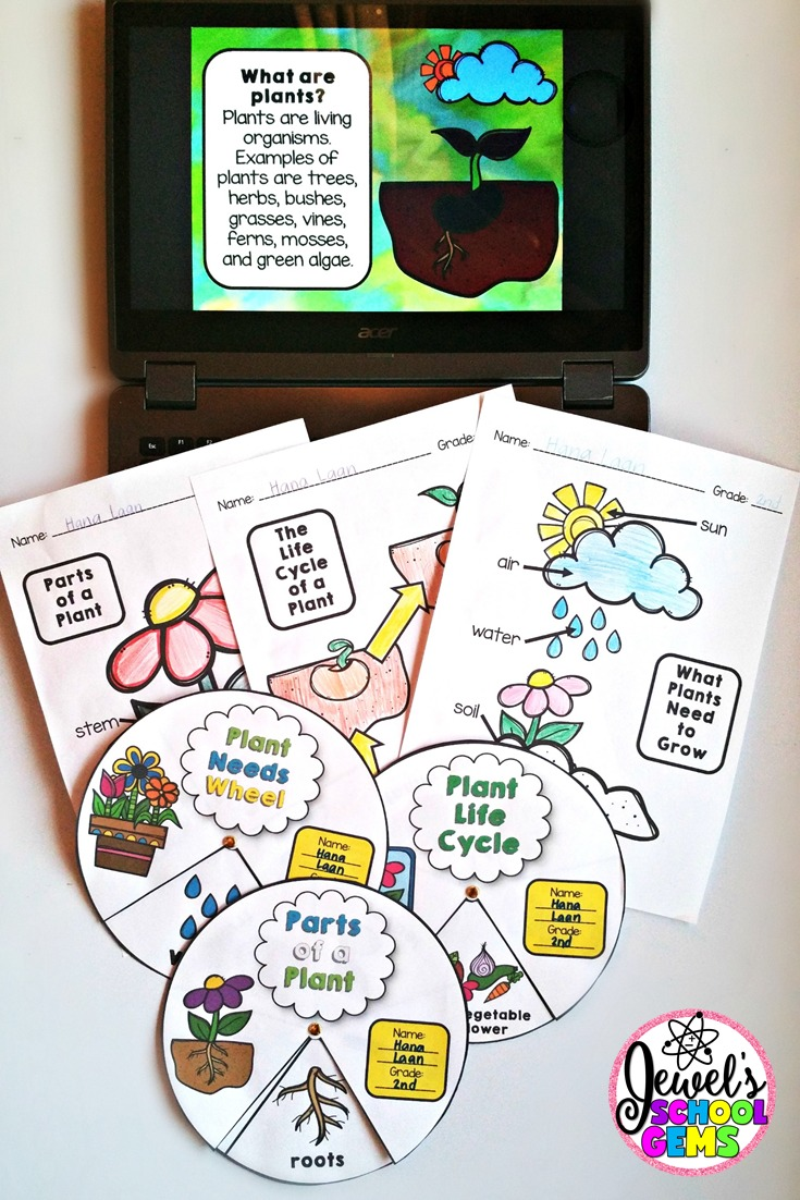 How to Teach Plants for Kids by Jewel Pastor of Jewel's School Gems | Read about different ways and grab freebies!