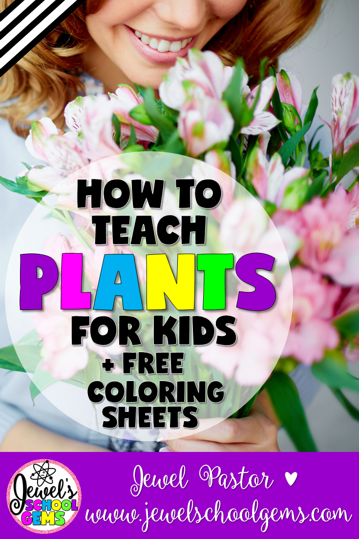 HOW TO TEACH PLANTS FOR KIDS BY JEWEL PASTOR OF JEWELSCHOOLGEMS.COM | Here are some tips and resources on how to teach plants for kids. Read all about them PLUS download freebies when you become a subscriber.