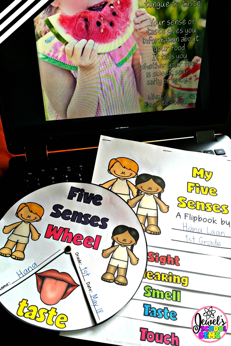 Five Senses | How to Teach the Five Senses by Jewel Pastor of www.jewelschoolgems.com | Looking for ideas, activities and resources on teaching the five senses? Click through to read various ways you can make learning fun and grab a FREE game!
