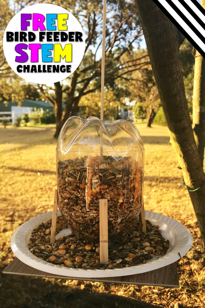 EASY! 3 EASTER STEM CHALLENGES TO TRY! MUST DO! (PLUS AN EARTH DAY FREEBIE!) BY JEWEL'S SCHOOL GEMS | The Easter STEM challenges are here, and I promise, you and your students are going to love this trio! I also have a special gift for all of you. You can get my Bird Feeder STEM Challenge for FREE today!