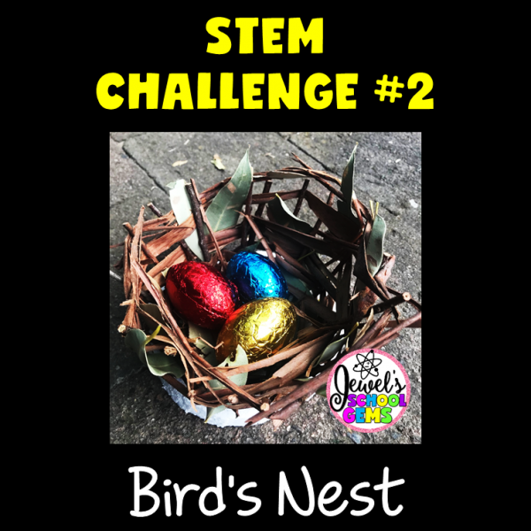 Bird's Nest Spring STEM Challenge
